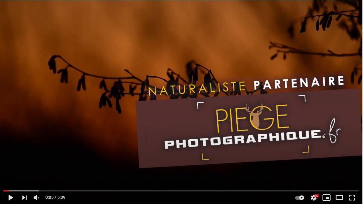 Présentation du collectif piegephotographique.fr
