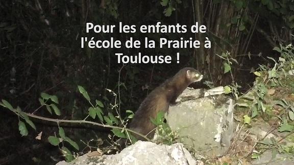 Pour les enfants de l'école de la Prairie à Toulouse