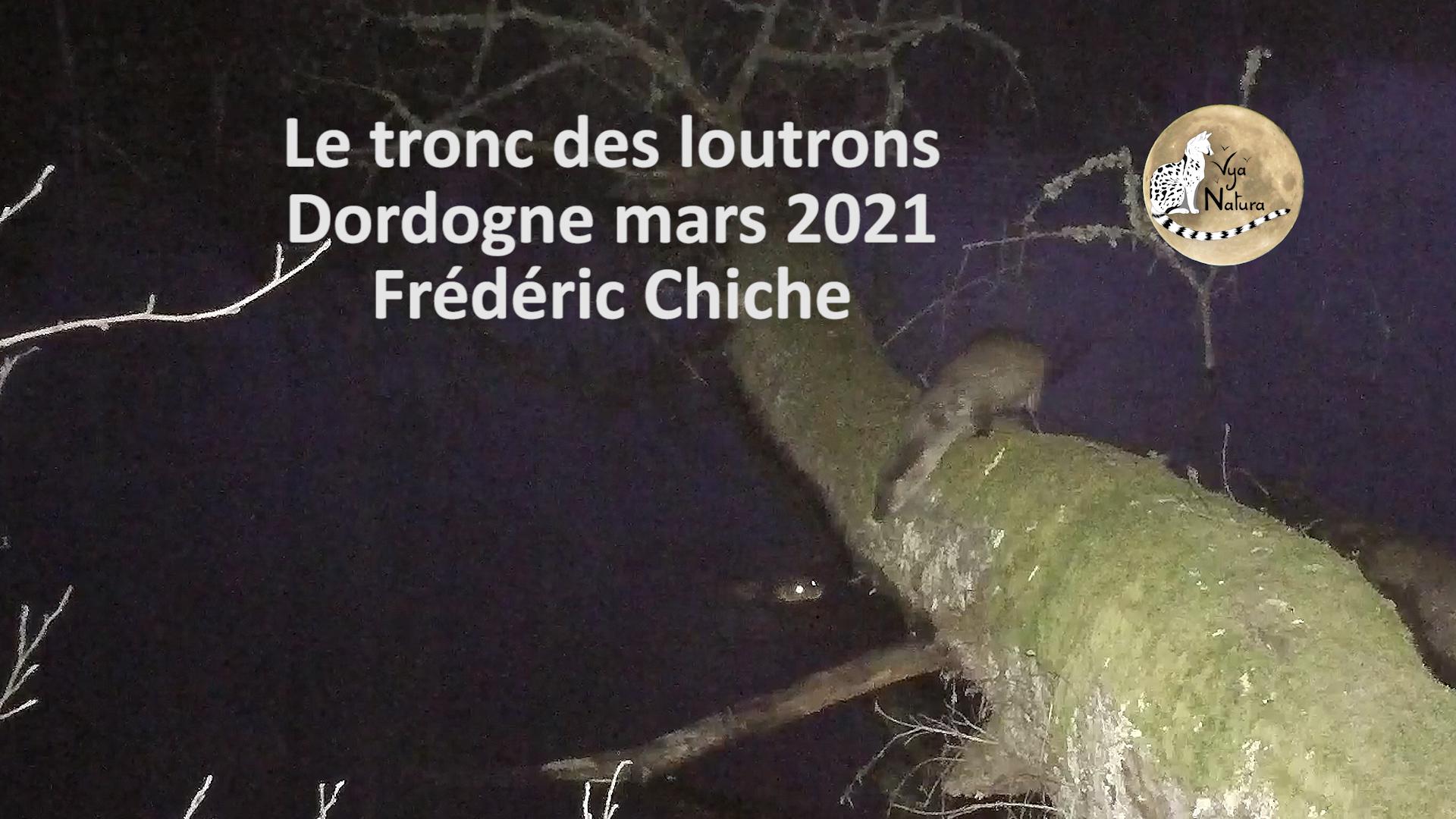 Le tronc des loutrons