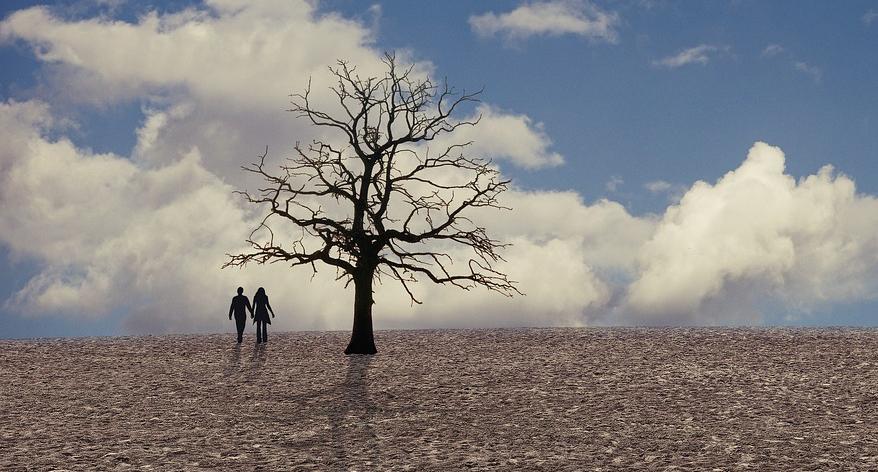 Scheitert unsere Zivilisation ausgerechnet am Menschen?