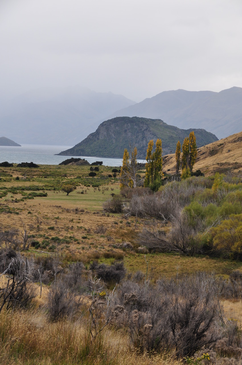 Wanderung bei Wanaka
