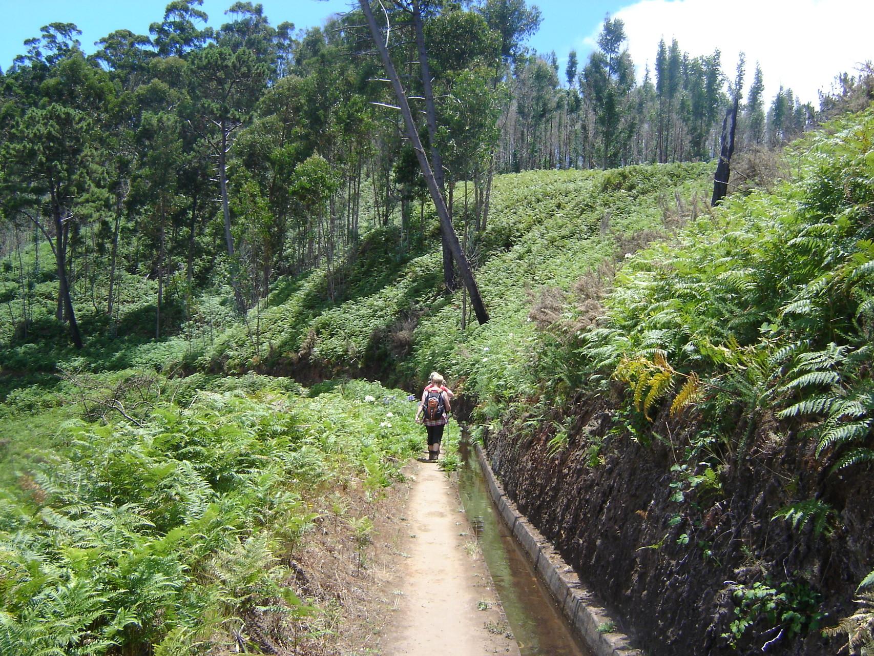 Wandern entlang der Levadas