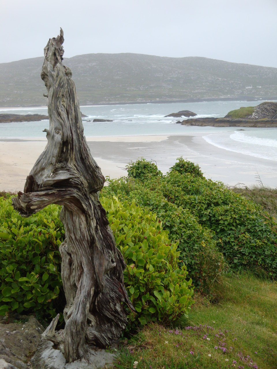 Derrynane National Historic Park und Ring of Kerry