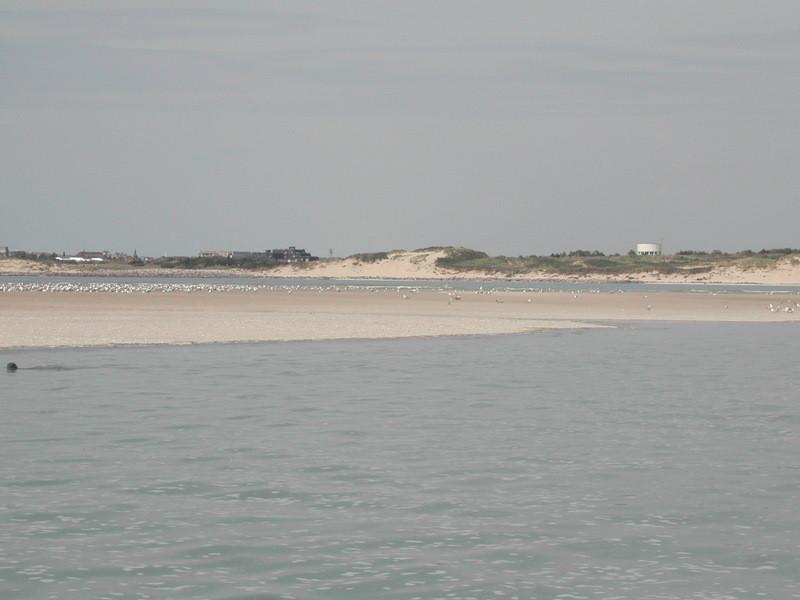 A marée montante en Baie d'Authie