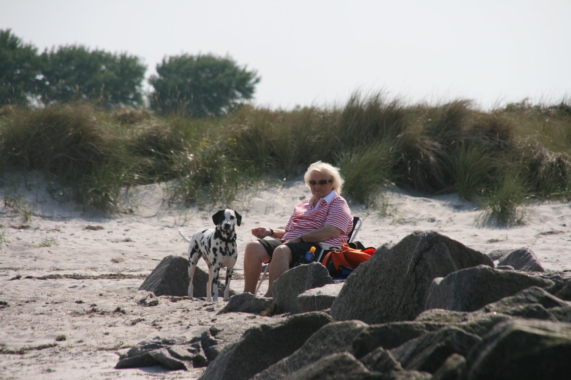"""... diesmal ist sogar mein """"großes Frauchen"""" mit am Strand gewesen!!!"""