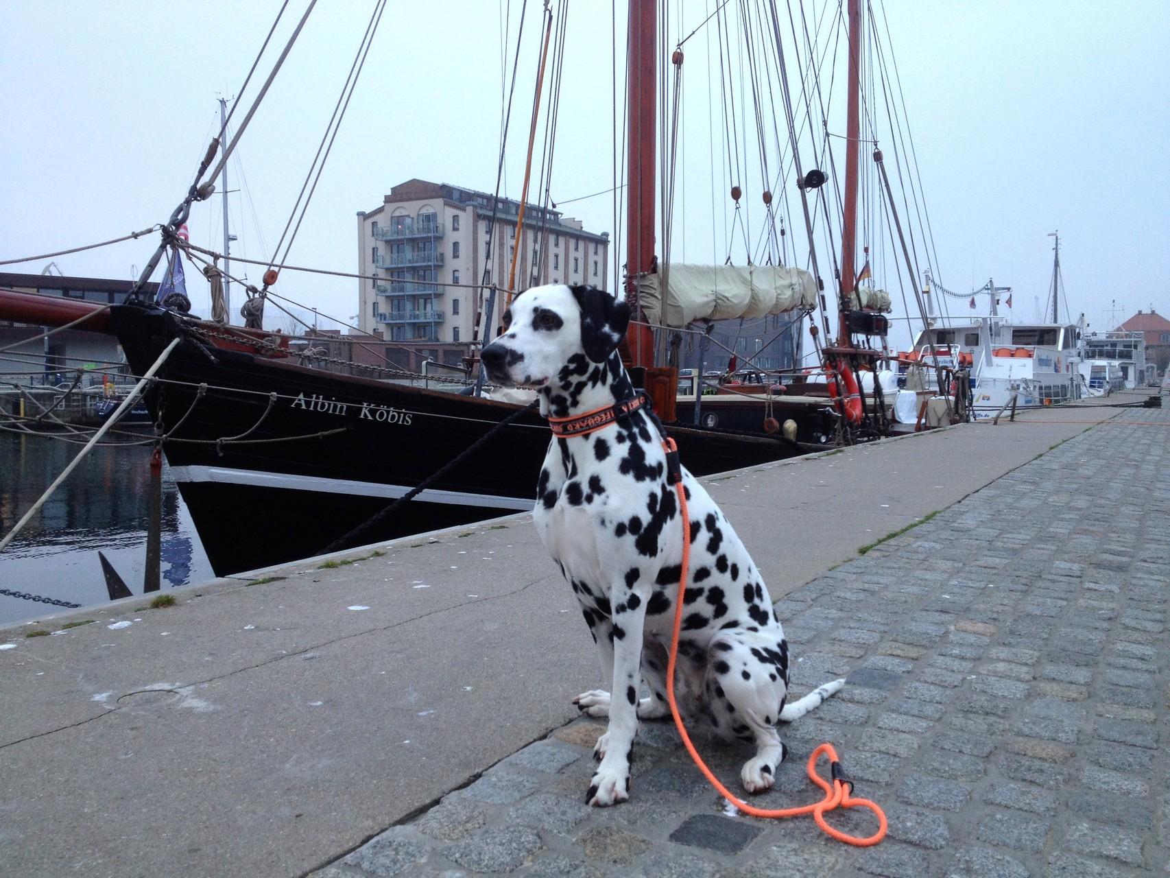 Hier sind wir am Hafen von Wismar ...