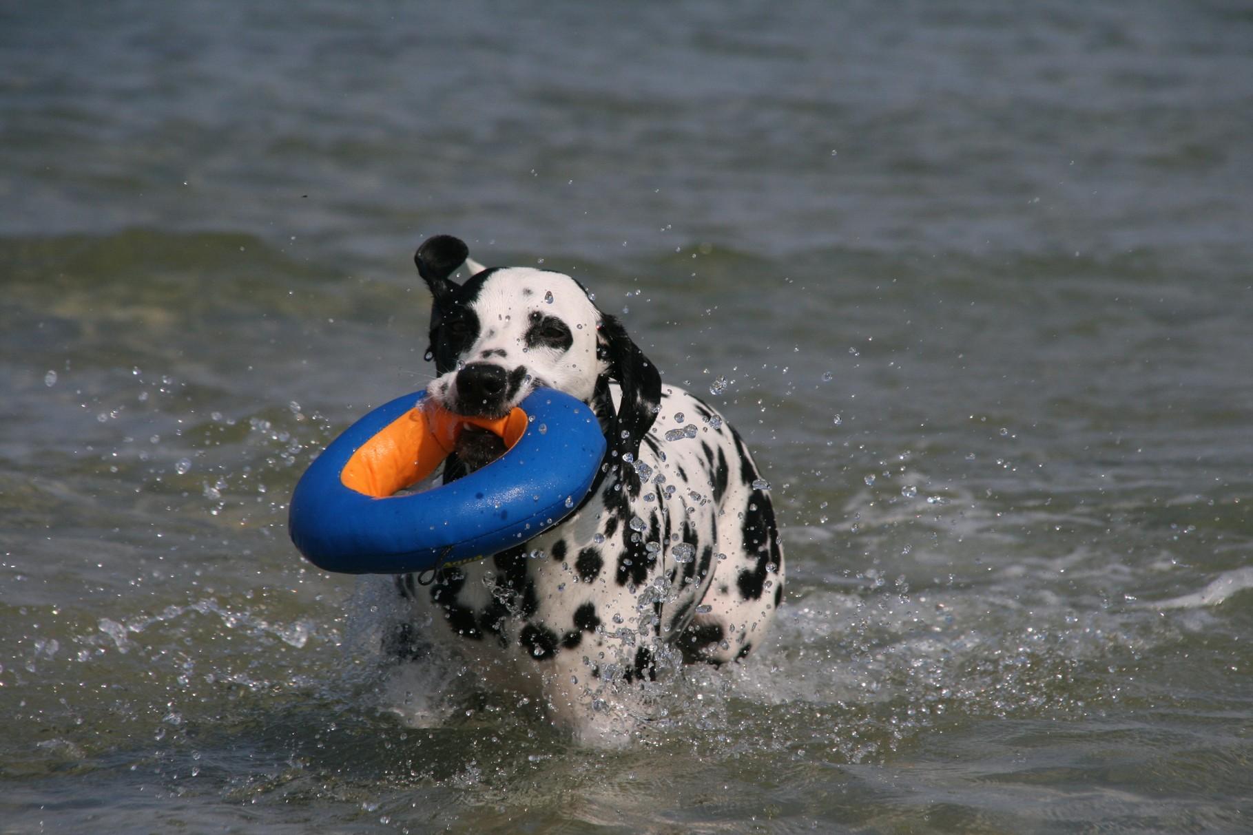 ... die Bade-Saison hat eröffnet!!!