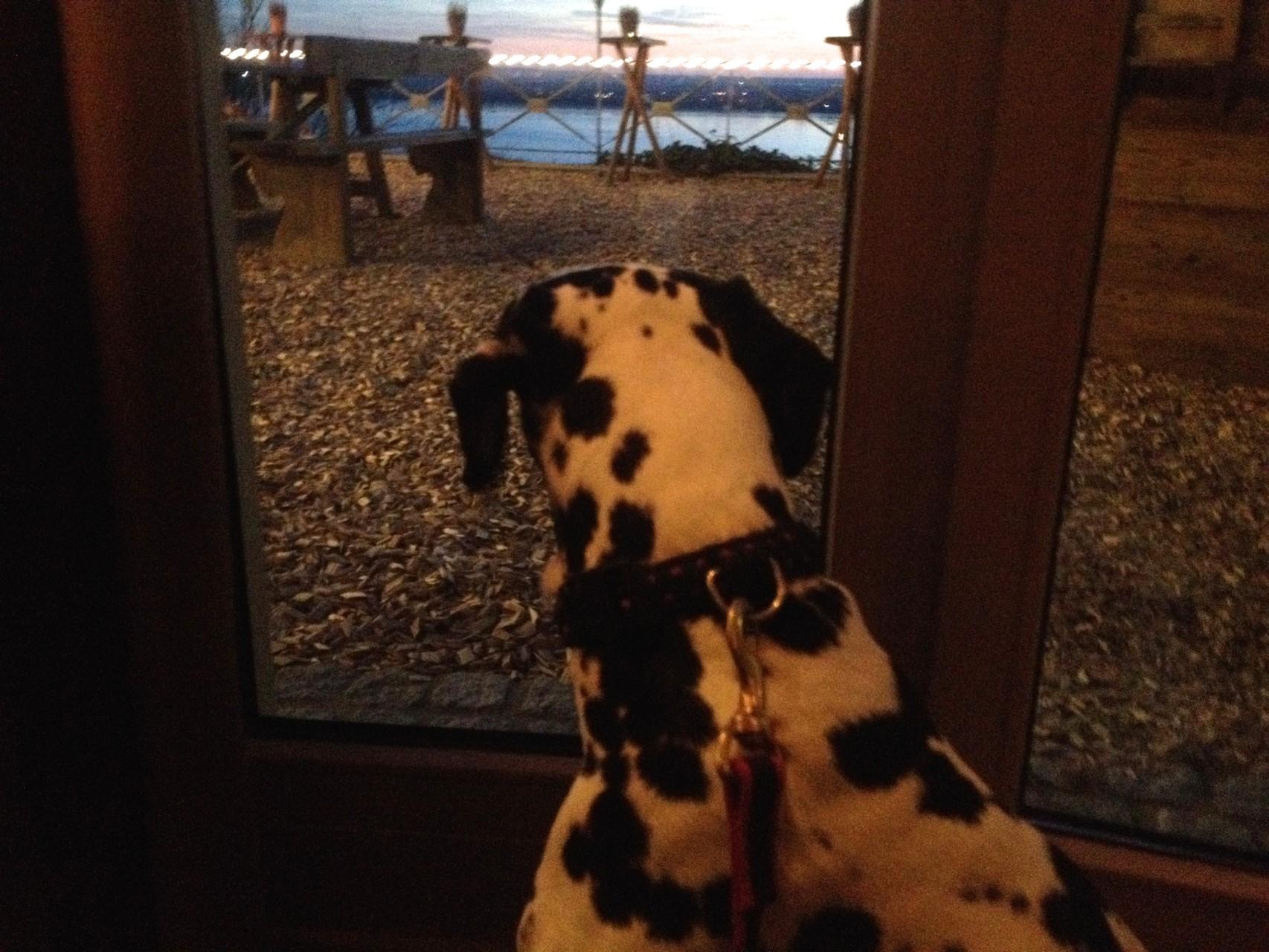 Vom Restaurant aus ist der Blick auch nicht übel ...