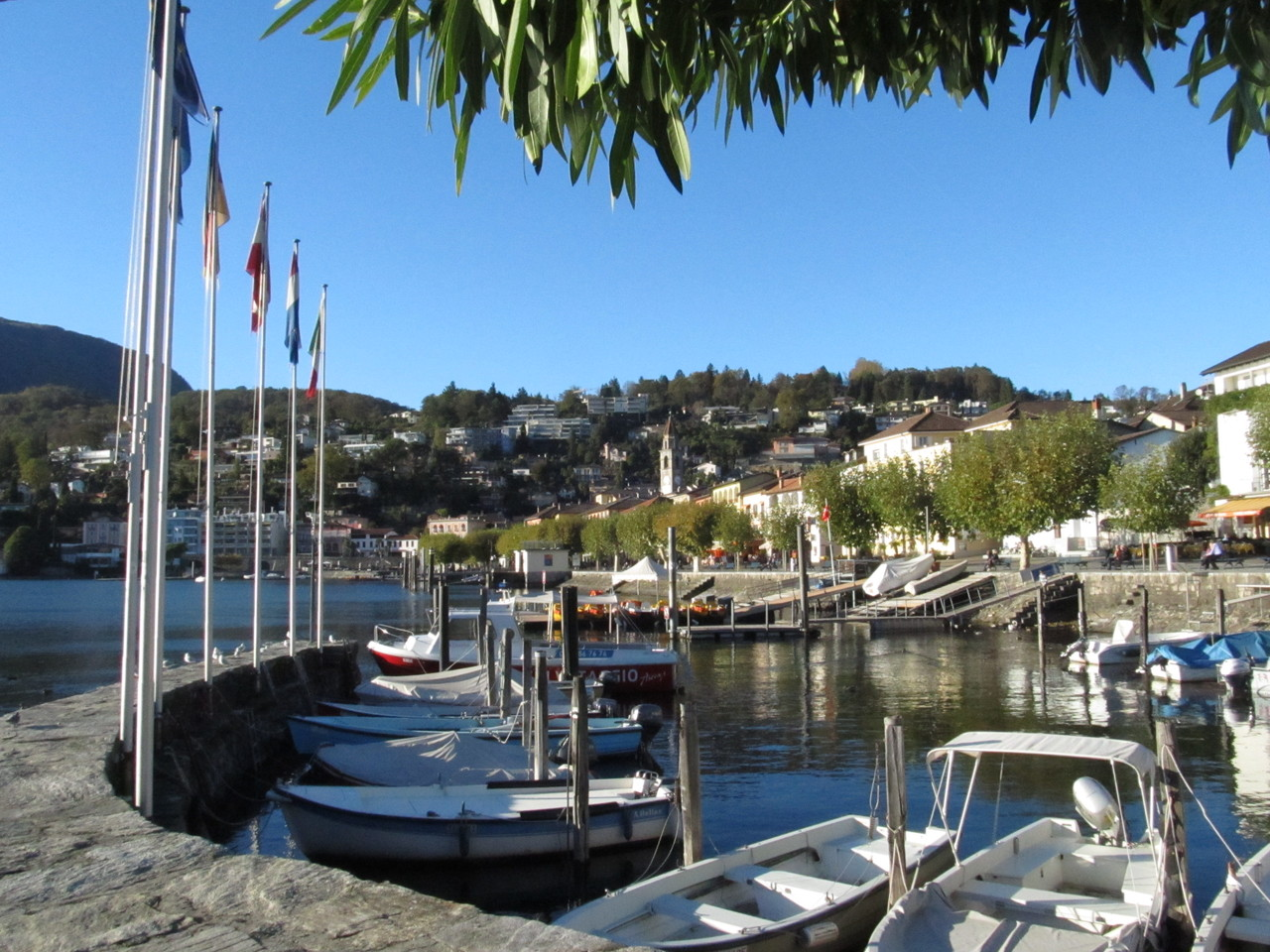 Der Hafen von Ascona mit Blick auf die Piazza