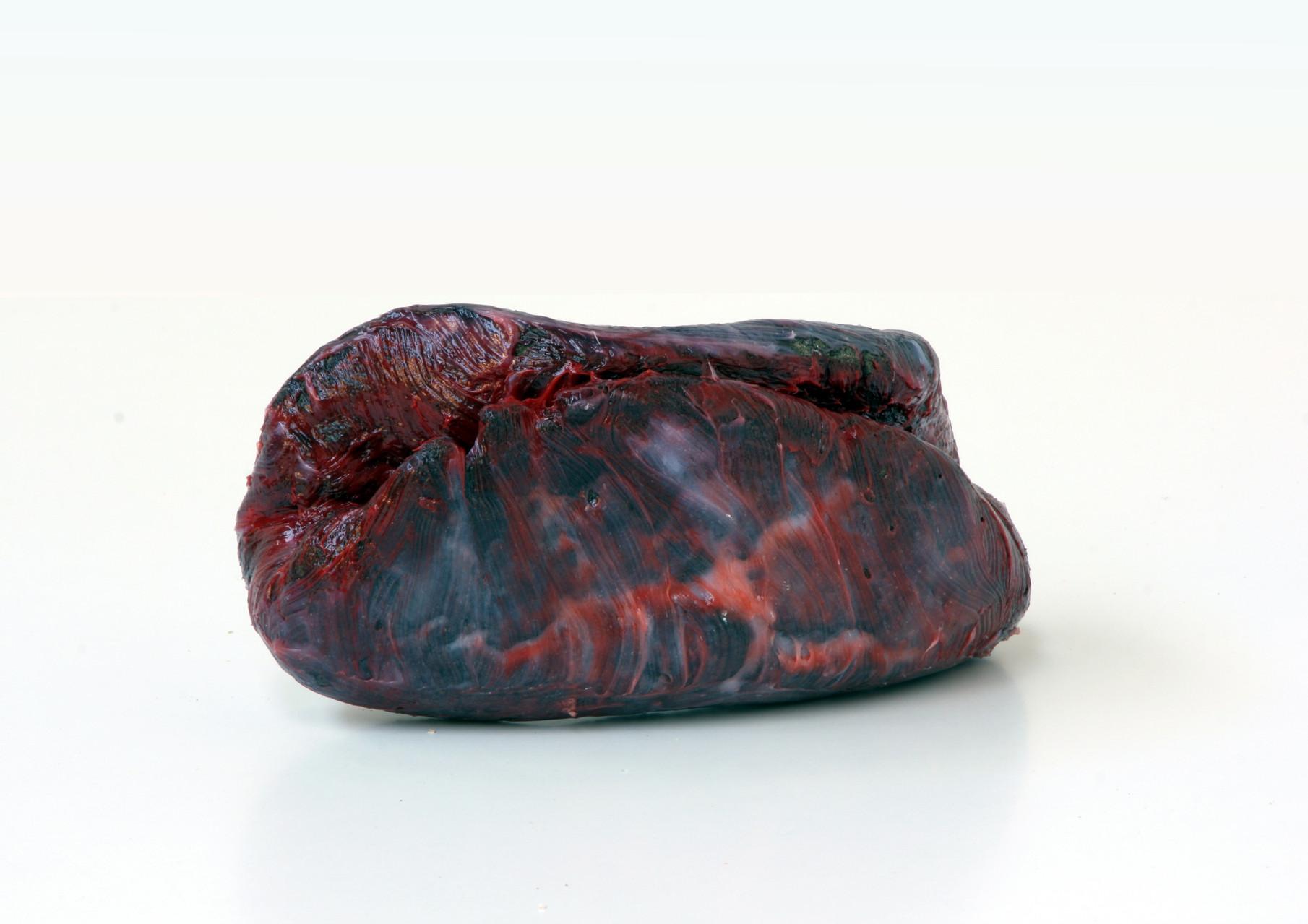 """meat"", Beton/Kunstharz/Pigmente, 14 x 27 x 12, 2008,"