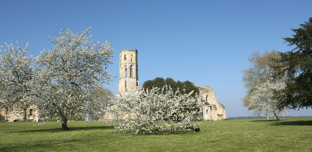 l'abbaye nichée dans son écrin de verdure