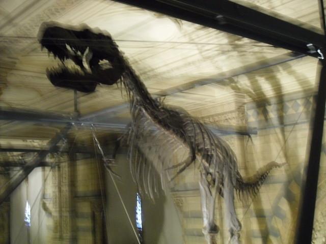 博物館の内部18