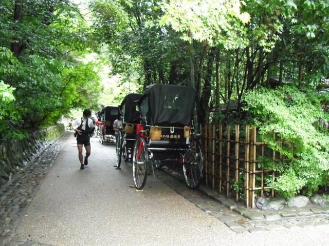 竹林公園7