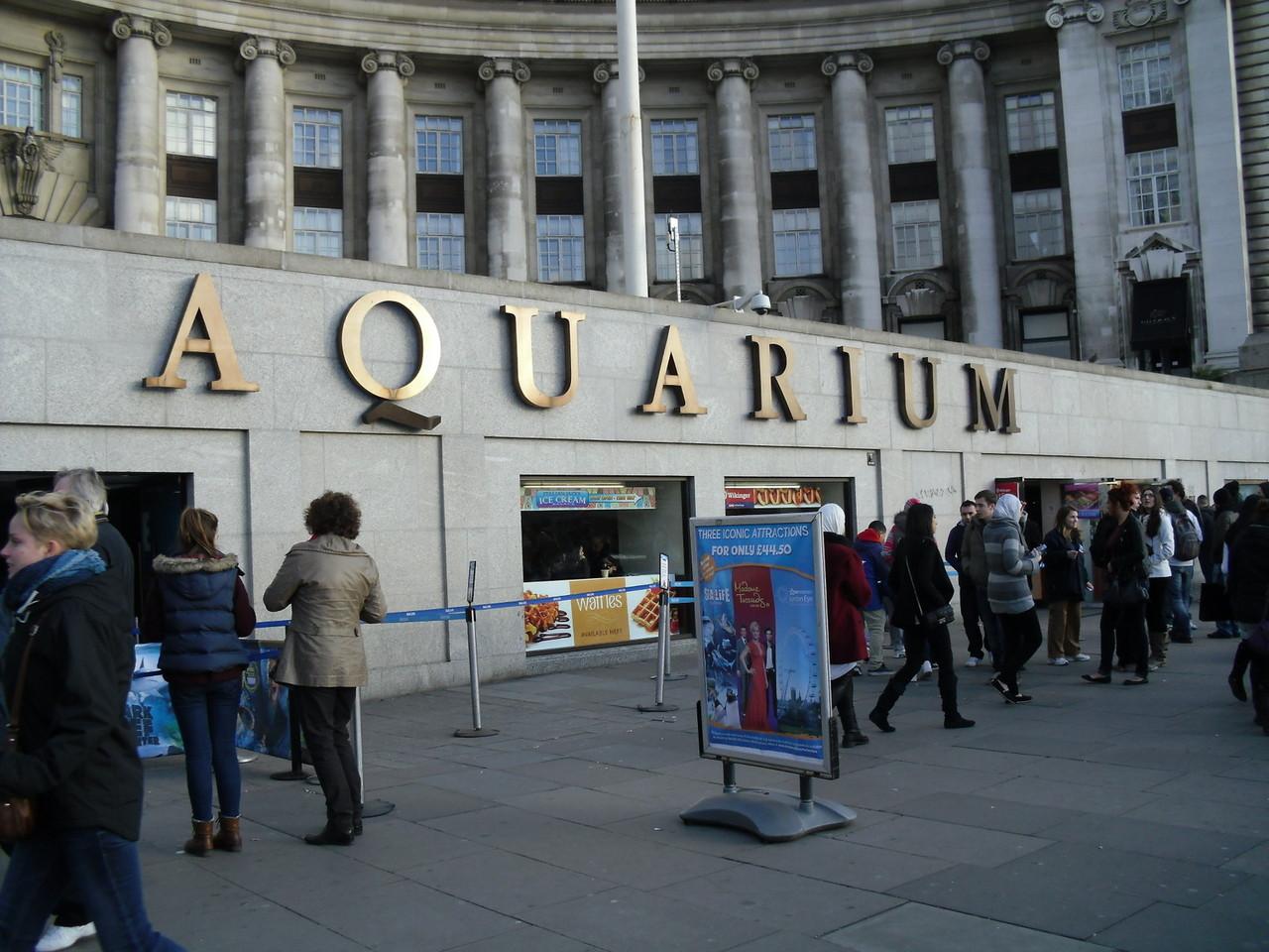 ロンドン・アイ周辺水族館