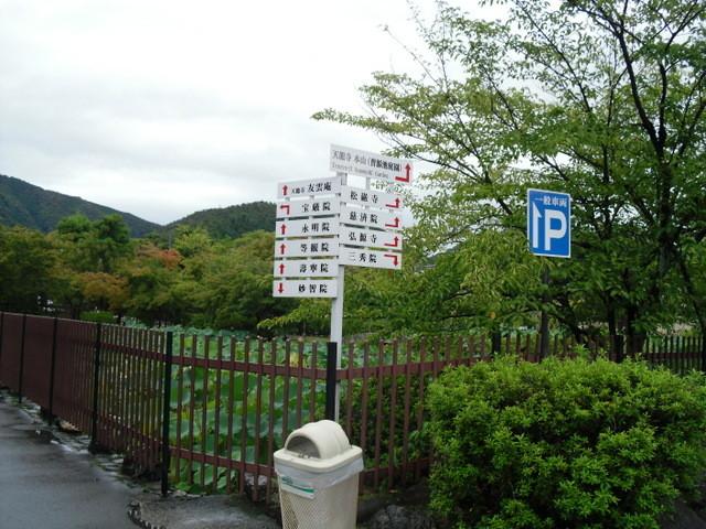 渡月橋から竹林への道中2