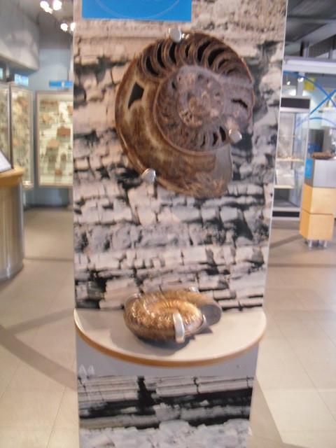 博物館の内部5