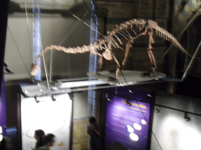 博物館の内部17