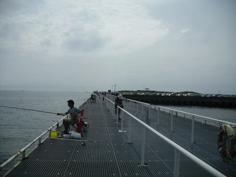 知多・豊浜の海6