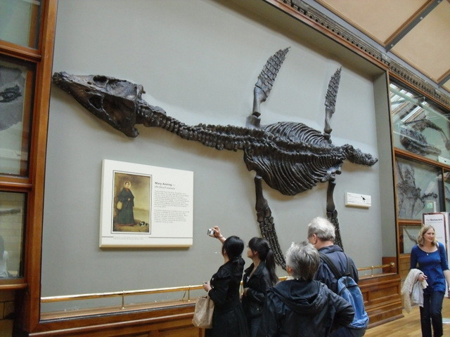 博物館の内部7