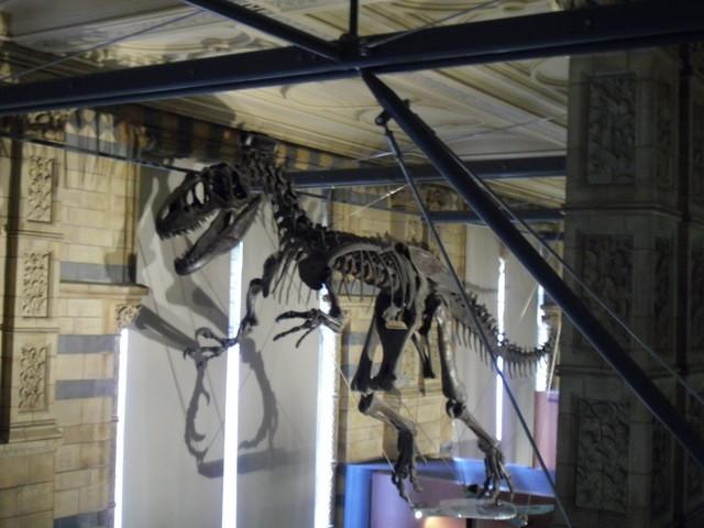 博物館の内部16