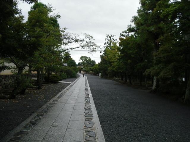 渡月橋から竹林への道中12