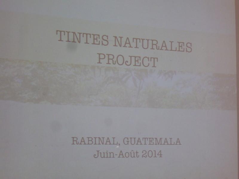 """""""Tintes Naturales Project"""" l'importance des teintures végétales des femmes Mayas au Guatemala"""