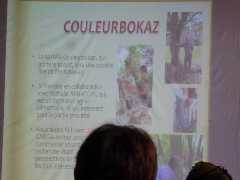 Création d'une filière couleurs végétales de Guadeloupe avec le soutien de Michel Garcia