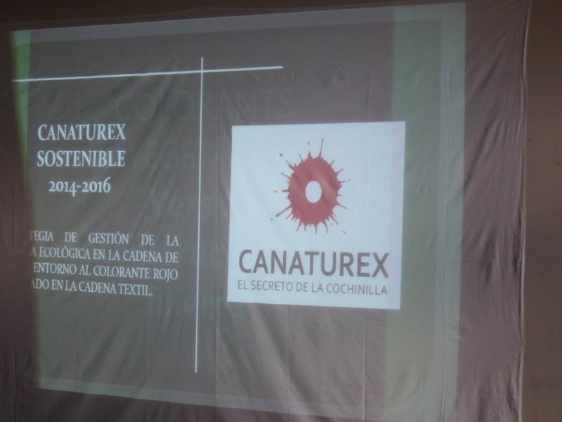 """""""La cochenille des Canaries"""""""