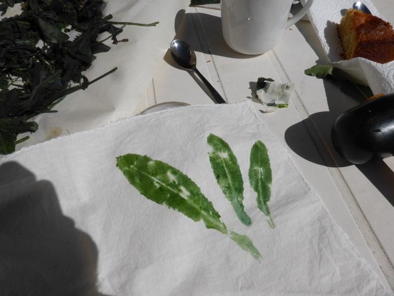 Exposition au soleil des feuillesde pastel qui viennent d'être frappées sur le tissu