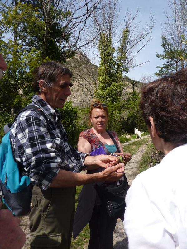 Un auditoire très attentif aux explications du botaniste