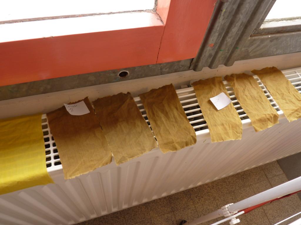 Echantillonnage des tanins pour réaliser un nuancier