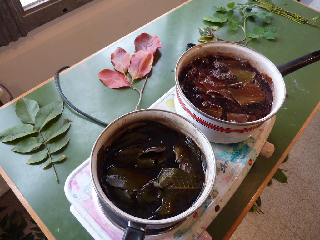 Bain de feuilles de noyer et de kaki