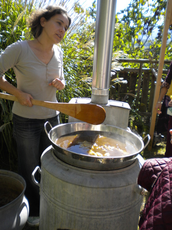 Impression d'écharpes avec des fanes de carottes par l'association Couleur Garance