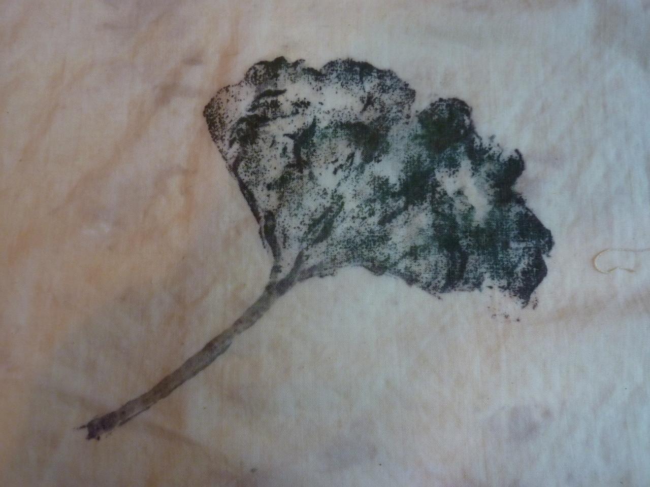 Impression de végétaux à tanin sur coton et lin