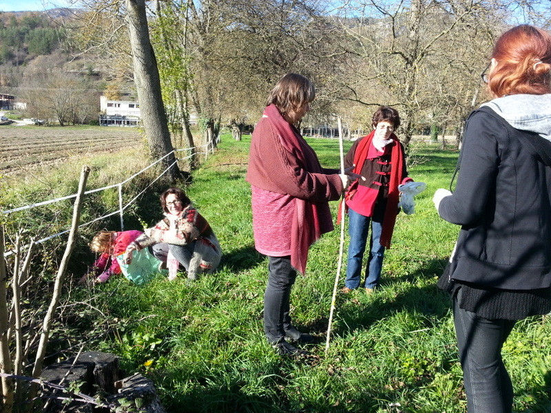Cueillette de végétaux autour de la Fondation Robert Ardouvin