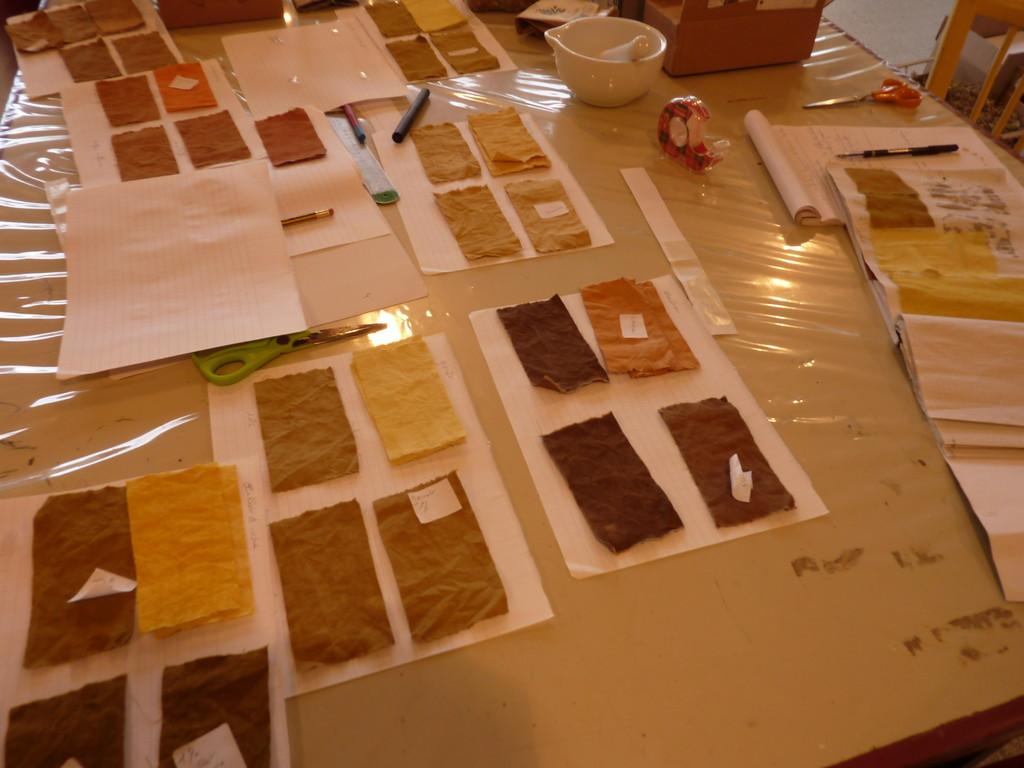 Réalisation du nuancier des couleurs obtenues avec les plantes