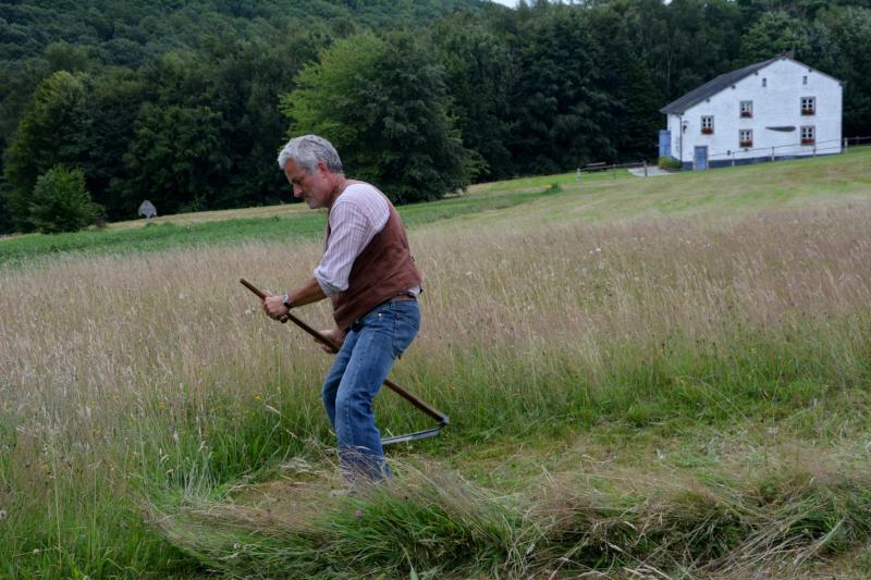 Le Pic Vert   Travail de fauchage, Peter De Schepper