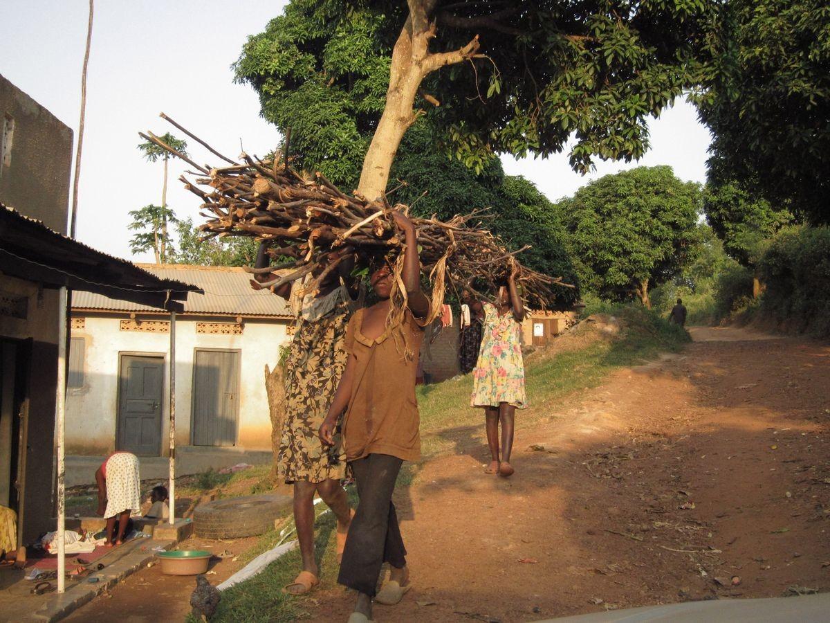 Kinder beim Feuerholztransport