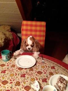 nichts auf dem Teller