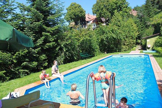 Ferienhof Hölzleberg - Ferienwohnung im Schwarzwald mit Pool, mit Schwimmbad, Ferienwohnung Schwarzwald von privat in Durbach - Pool für Hausgäste