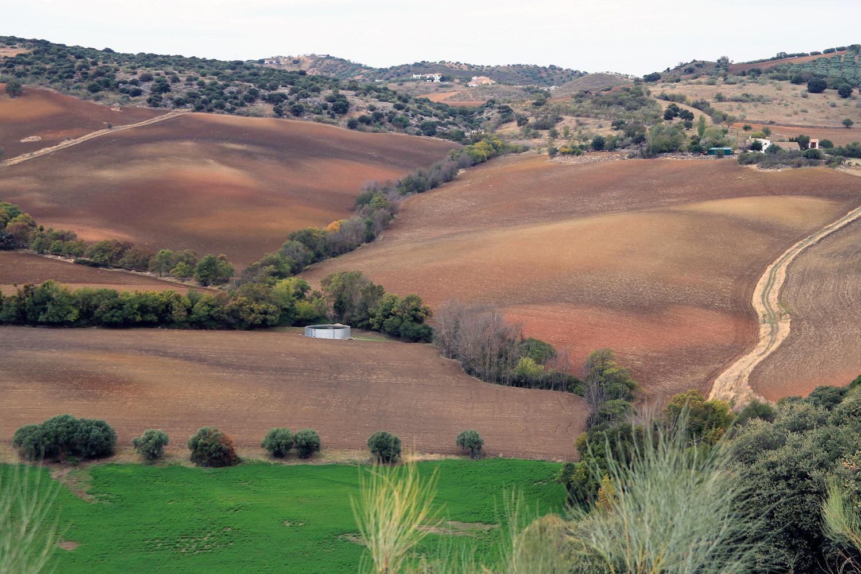 Colored Landscape near Riofrio