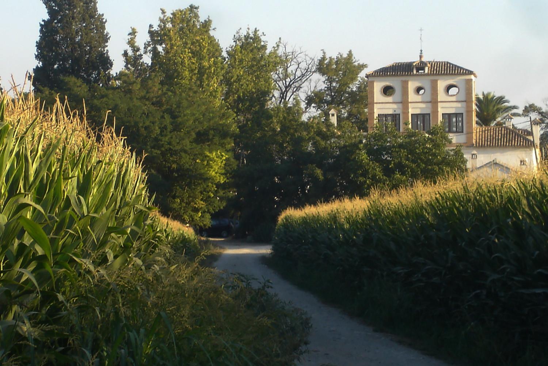 View on the farmhouse