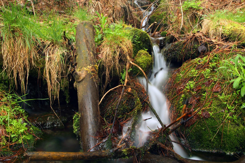 The Green Valley of Jérez de Marquesado