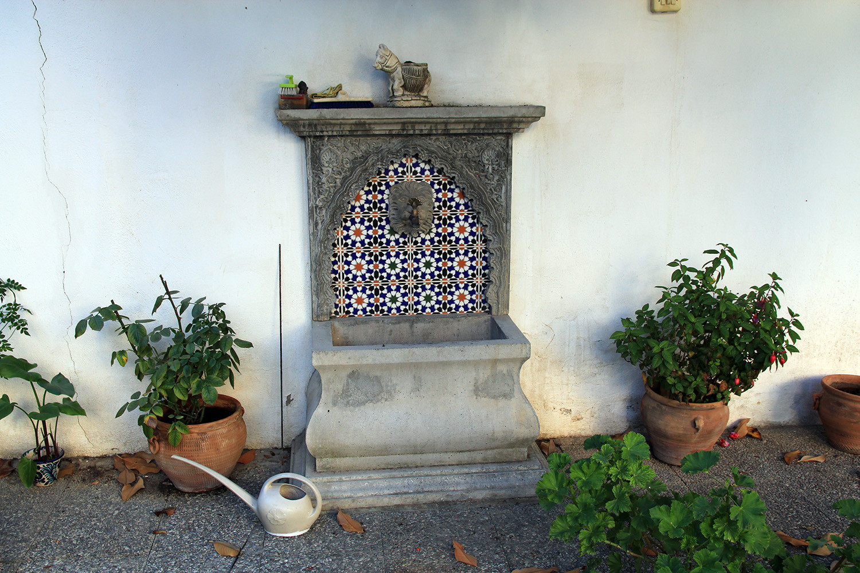 Detail of the garden