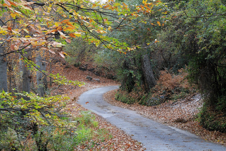 The Road to Capilerilla