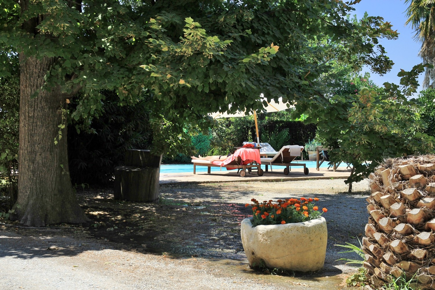 View to the swimmingpool