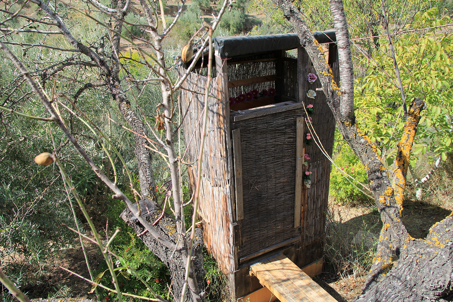 The compost poo (toilet)