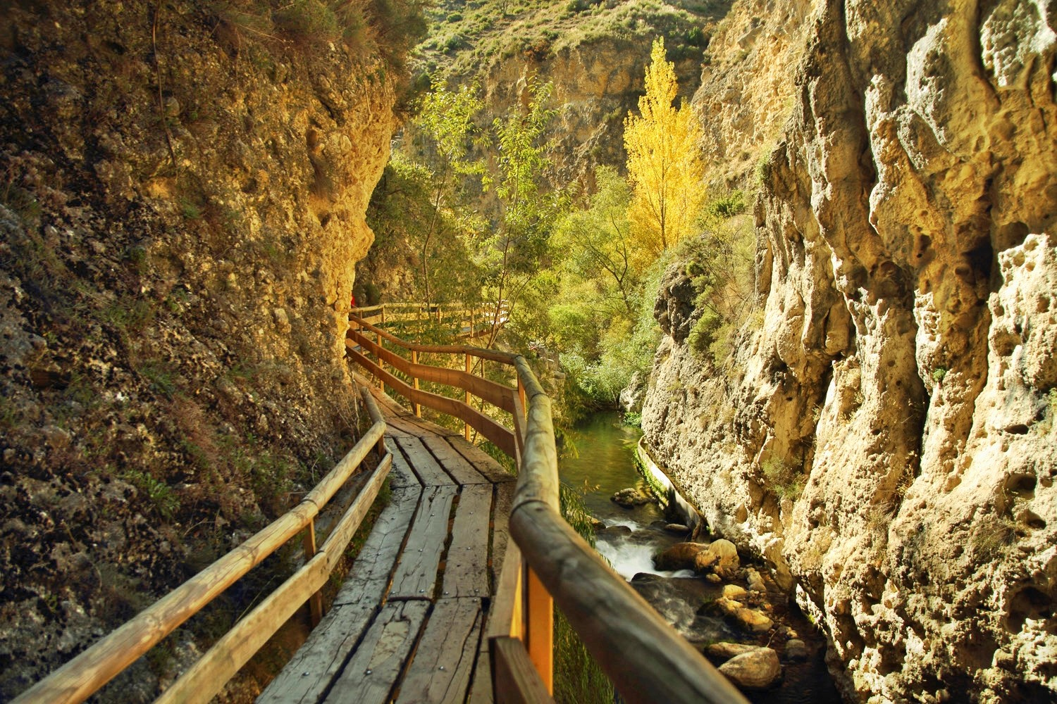 The Trail in the Canyon of Rio Castril in Castril