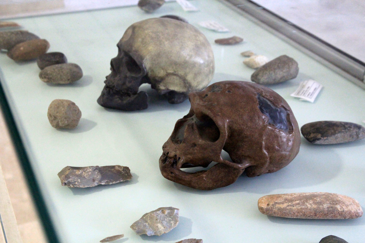 The Prehistoric Remains Found in Piñar