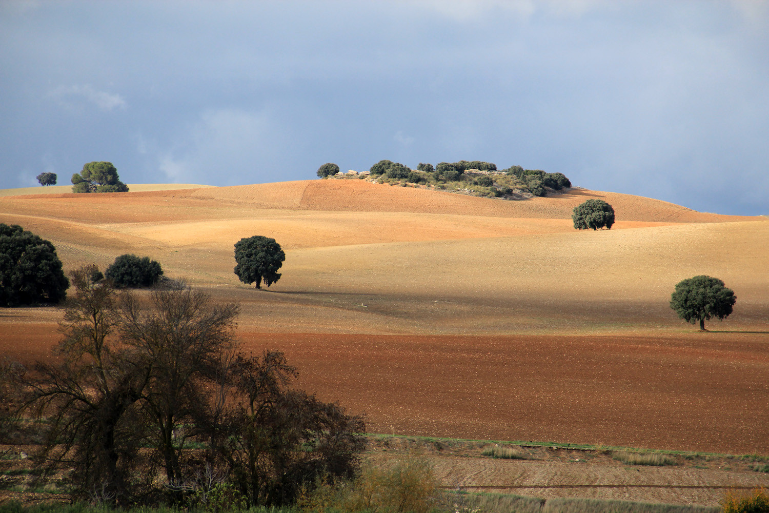 Countryside of Piñar